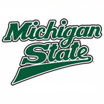 Dragon Crossing Michigan State Michigan State University State Of Michigan