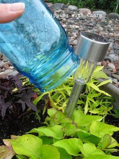 Photo of Chipping with Charm: Ball Jar Solar Lights … http: //chippingwithcharm.blogspot.c …