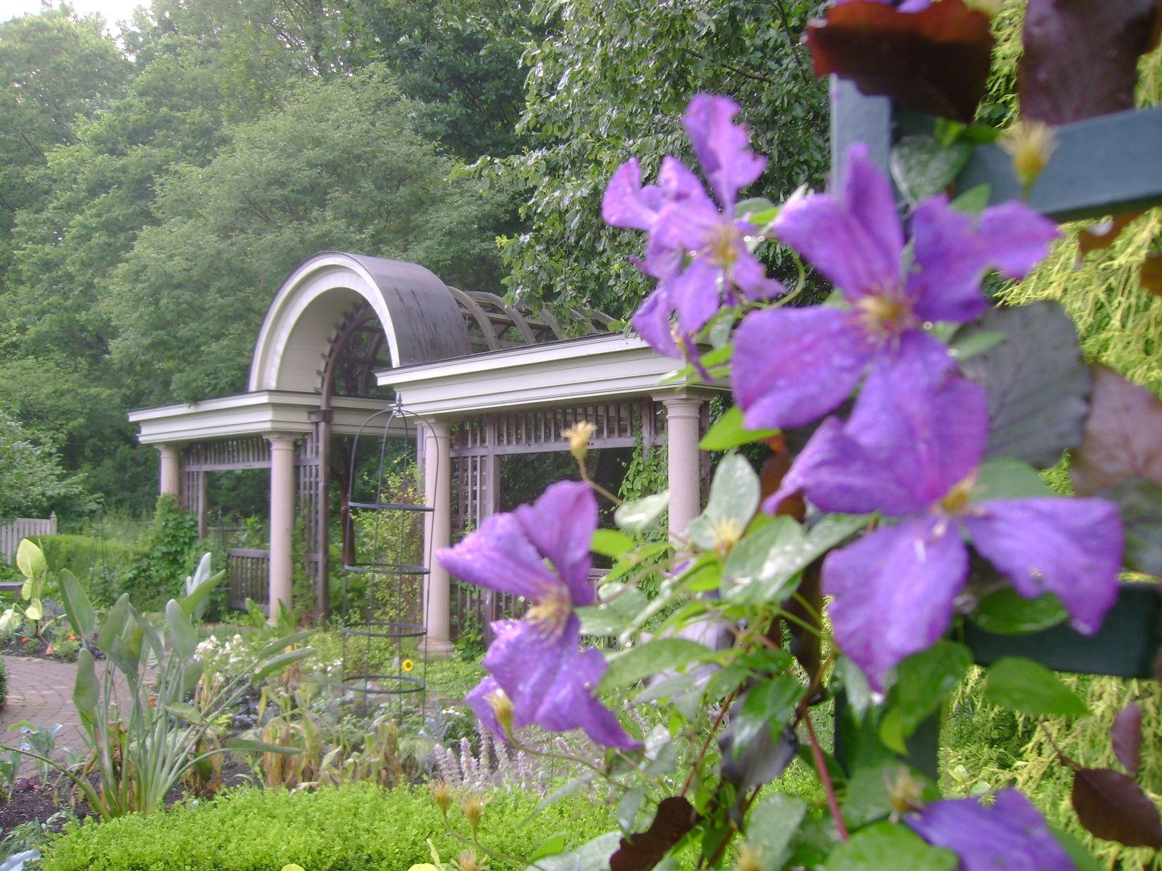 wegerzyn gardens metro park | dayton | pinterest | best purple