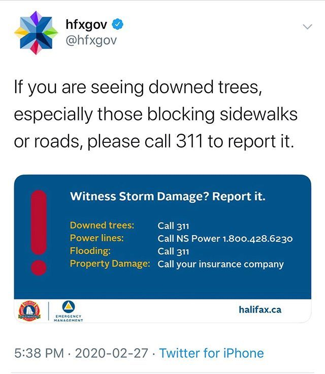 From Hfxgov If You Are Seeing Downed Trees Especially Those