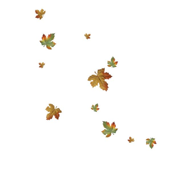 R11 Autumn 2012 140 Png Fall Leaves Png Leaf Wallpaper Maple Leaf Tattoo