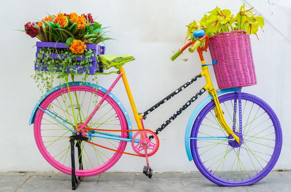 bike flower color Zdjęcia, Rower, Ogrody