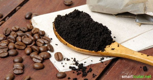 Photo of 15 clever things you can do with coffee grounds