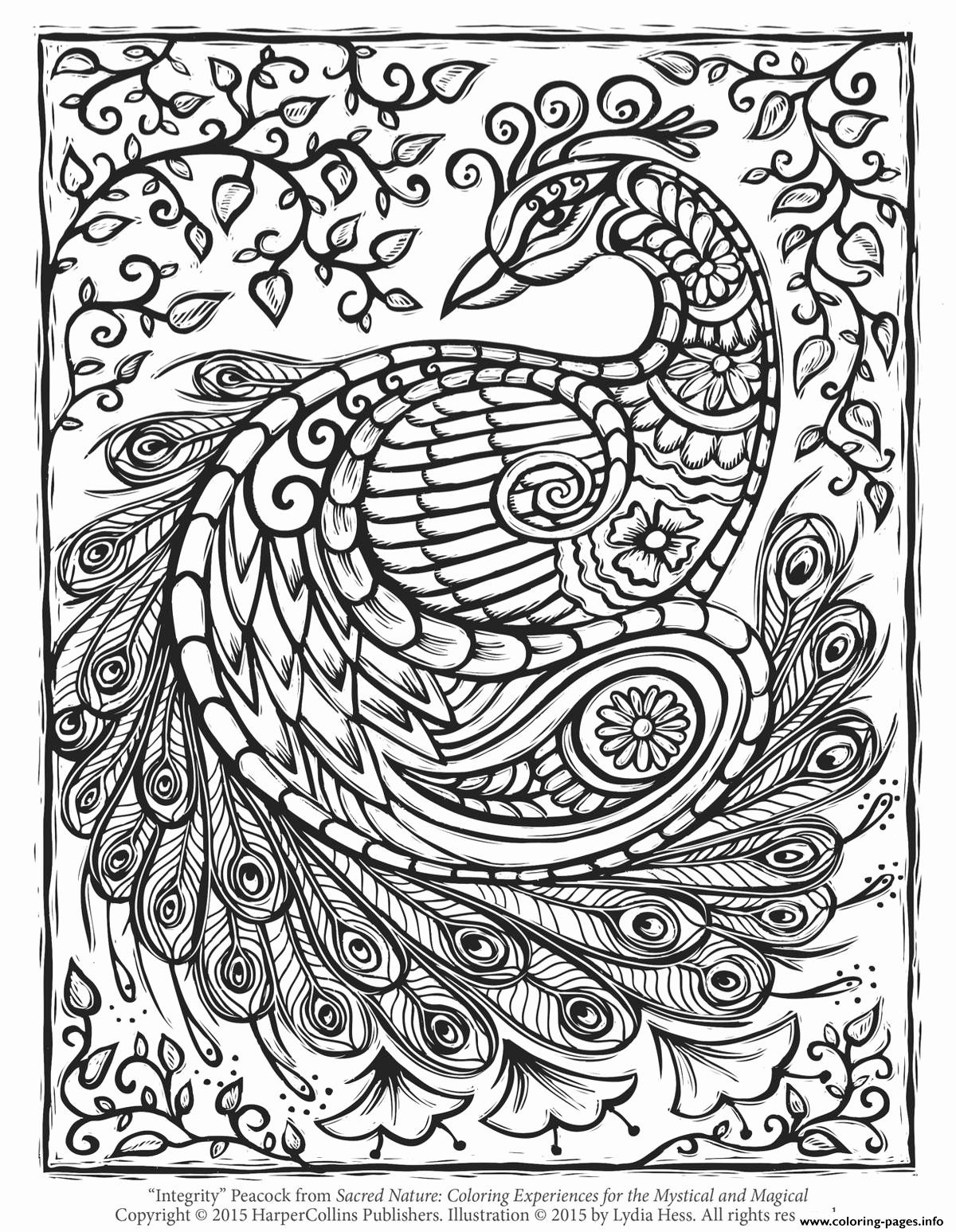Nature Coloring Pages For Adults New Coloring Books Outstanding Advanced Coloring Pages F Peacock Coloring Pages Unicorn Coloring Pages Abstract Coloring Pages