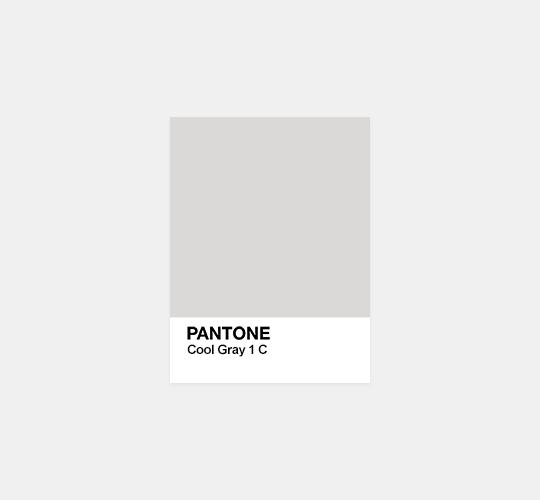 gray neutrals color inspo pantone pallets 2655 c 143