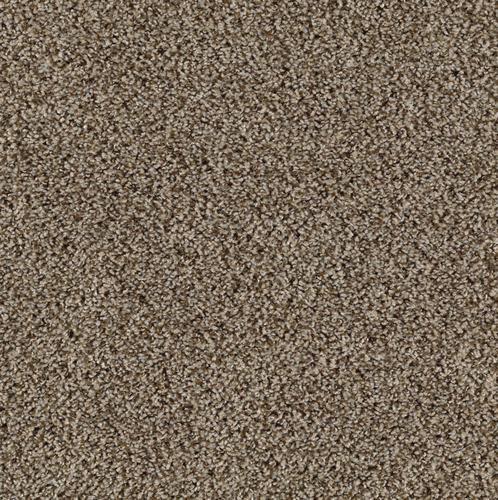 Mohawk Coastal Breeze Frieze Carpet 12 Ft Wide At Menards Textured Carpet Frieze Carpet Carpet Samples