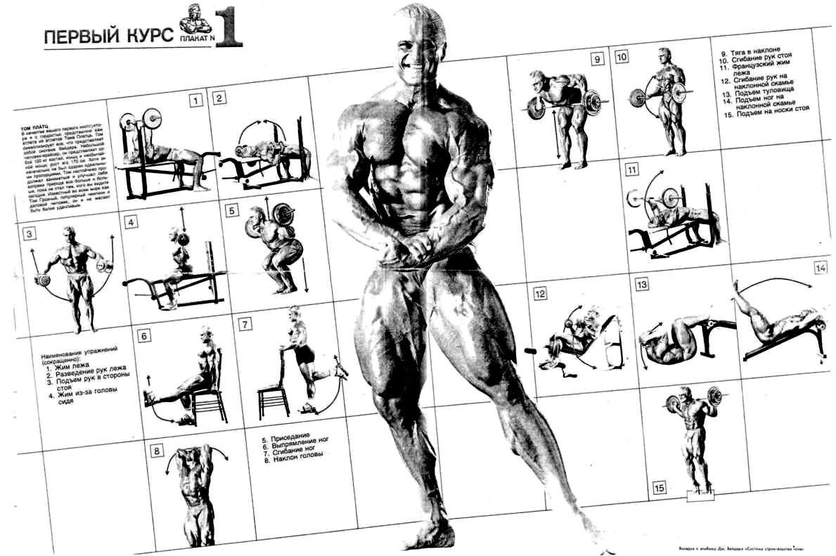 картинки с упражнениями вейдер сейчас это довольно