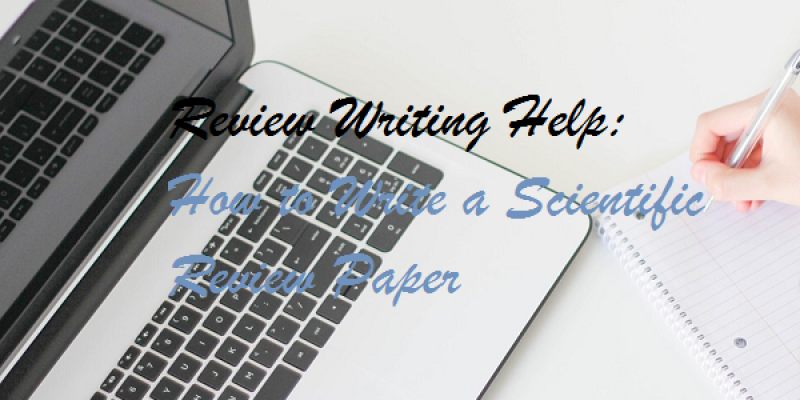 Affordable custom term papers