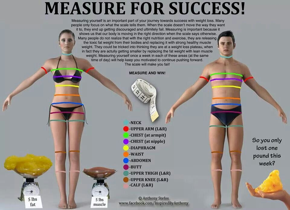 Proper Way To Measure Yourself