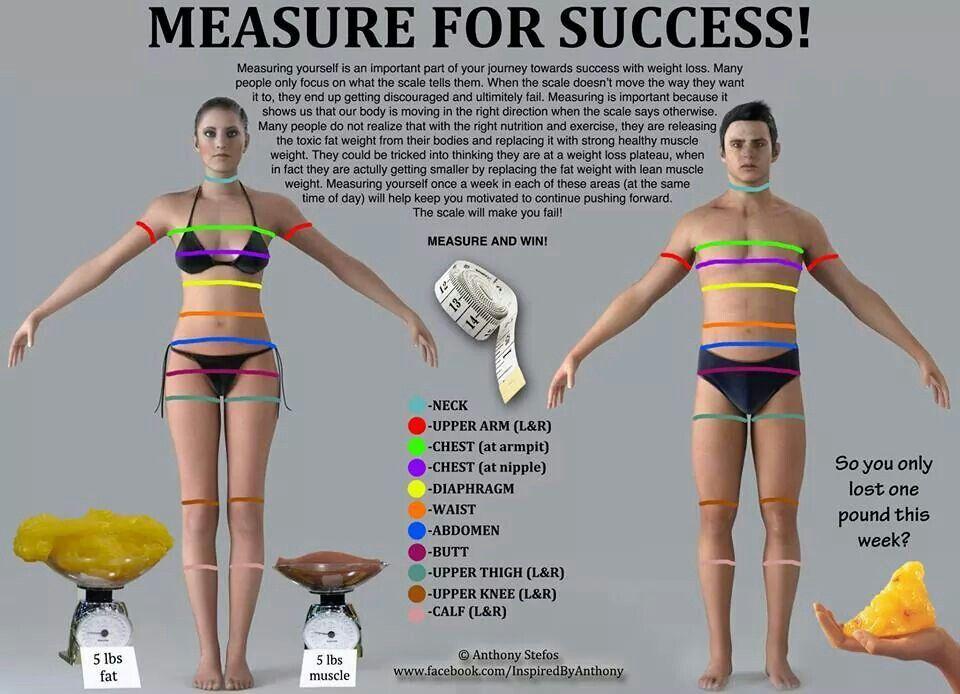 Proper way to measure yourself | Isagenix | Pinterest ...
