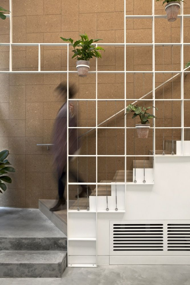 Best Gallery Of Olive Squash Neiheiser Argyros 2 In 2020 400 x 300