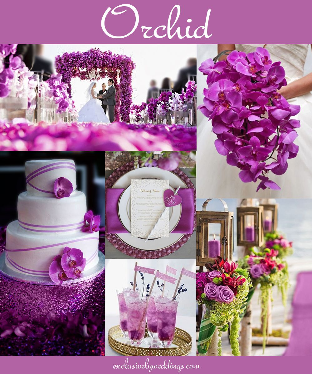 Your Wedding Color Don T Overlook Five Luscious Shades Of Purple