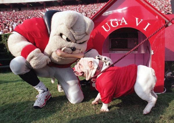 GAMEDAY!........finally.  Lets go Georgia Bulldogs!!
