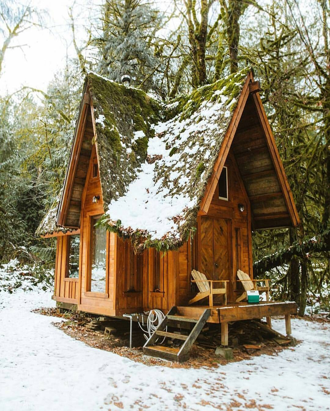 Cabin 200 Sq Ft Cabin With A Moss Covered Roof 1080 1345 Tiny House Cabin Little Cabin Cabins In The Woods