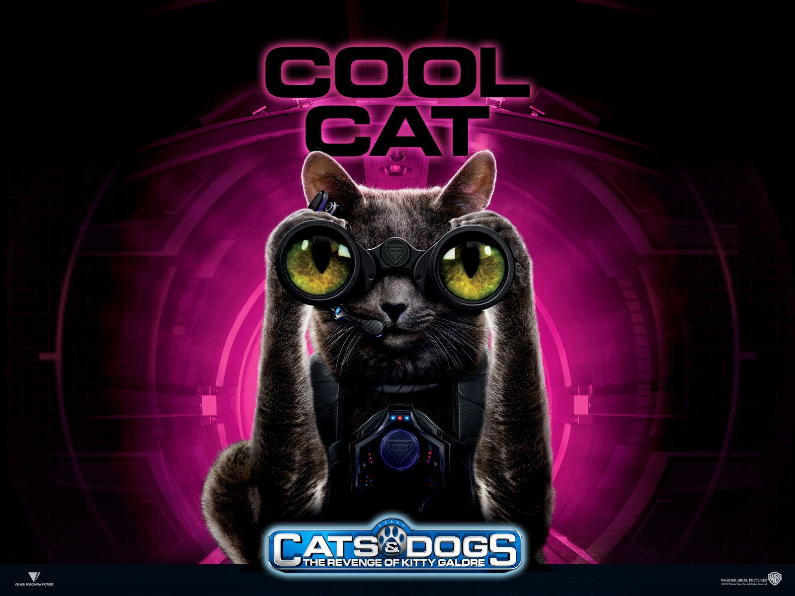 Watch Streaming Hd Cats Dogs The Revenge Of Kitty Galore Starring Bette Midler Chris O Donnell Jack Mcbrayer James Marsden The Ong With Images Cats Kitty Dog Films