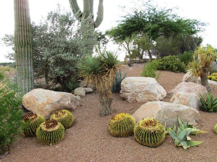 8 Steps to DIY xeriscape landscape design | Xeriscape ...