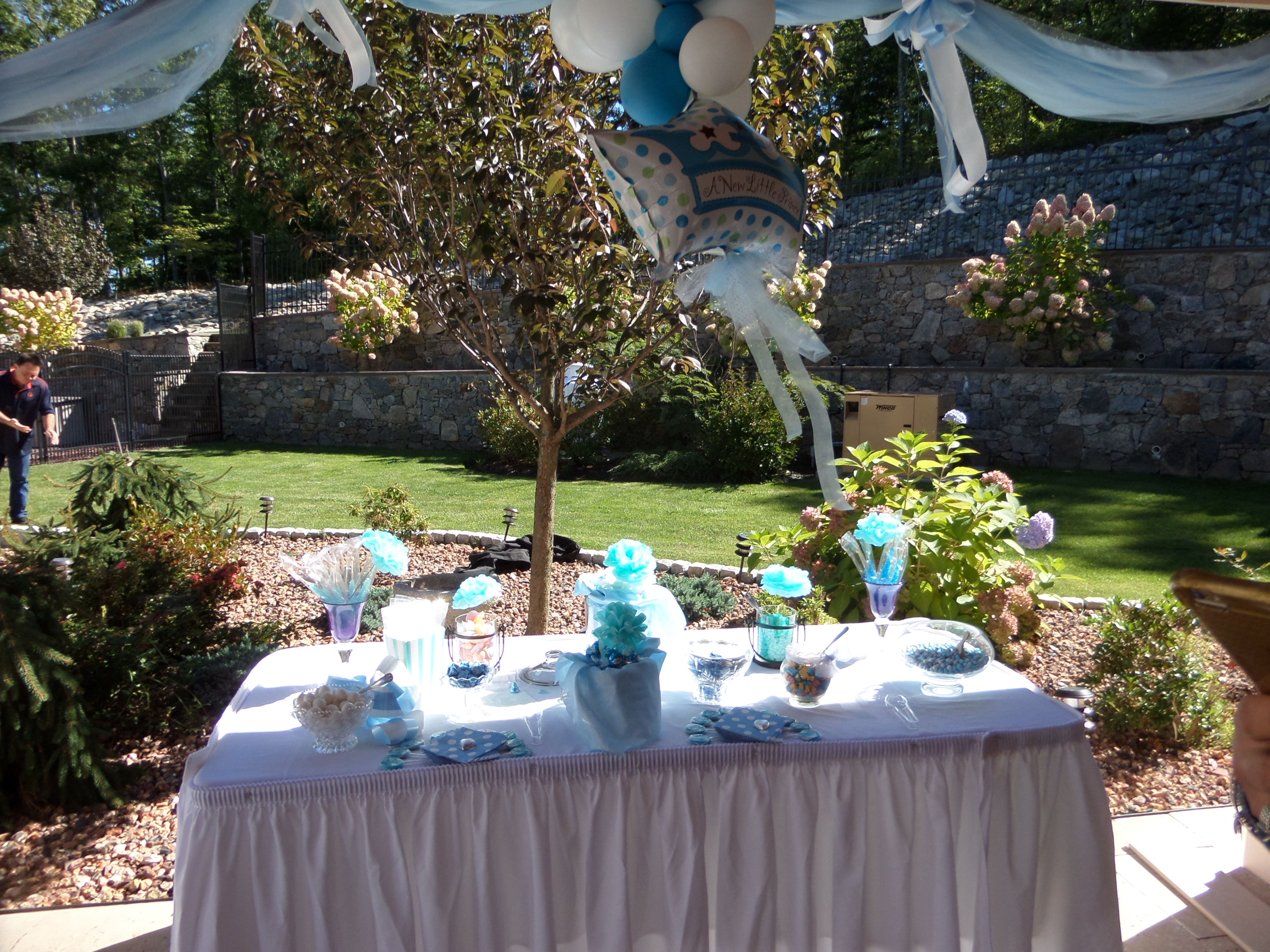 Candy table and decorations