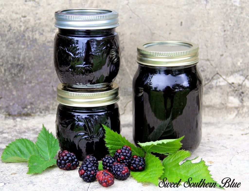 How to can blackberry jelly the easy way blackberry