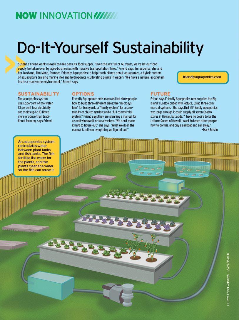 diy aquaponics plans free commercial aquaponics system plansdiy aquaponics plans free commercial aquaponics system plans \u2026