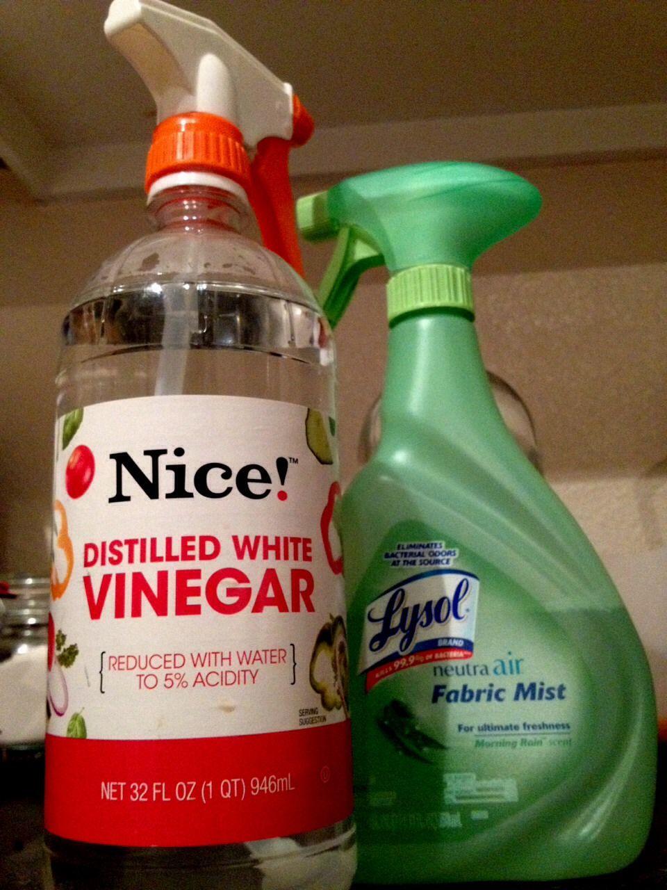 smell vinegar pee
