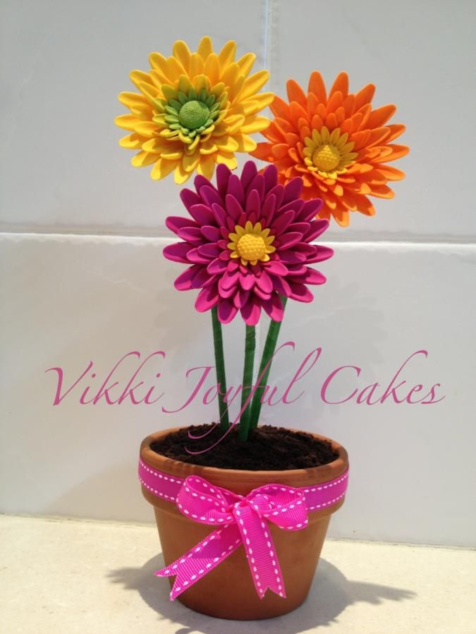 Gerbera flower pot cakes