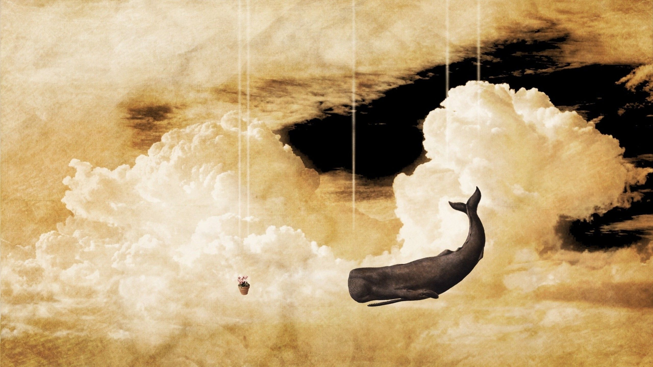 Sky, Whale, Clouds, Imagination, The Hitchhikers Guide To -8906