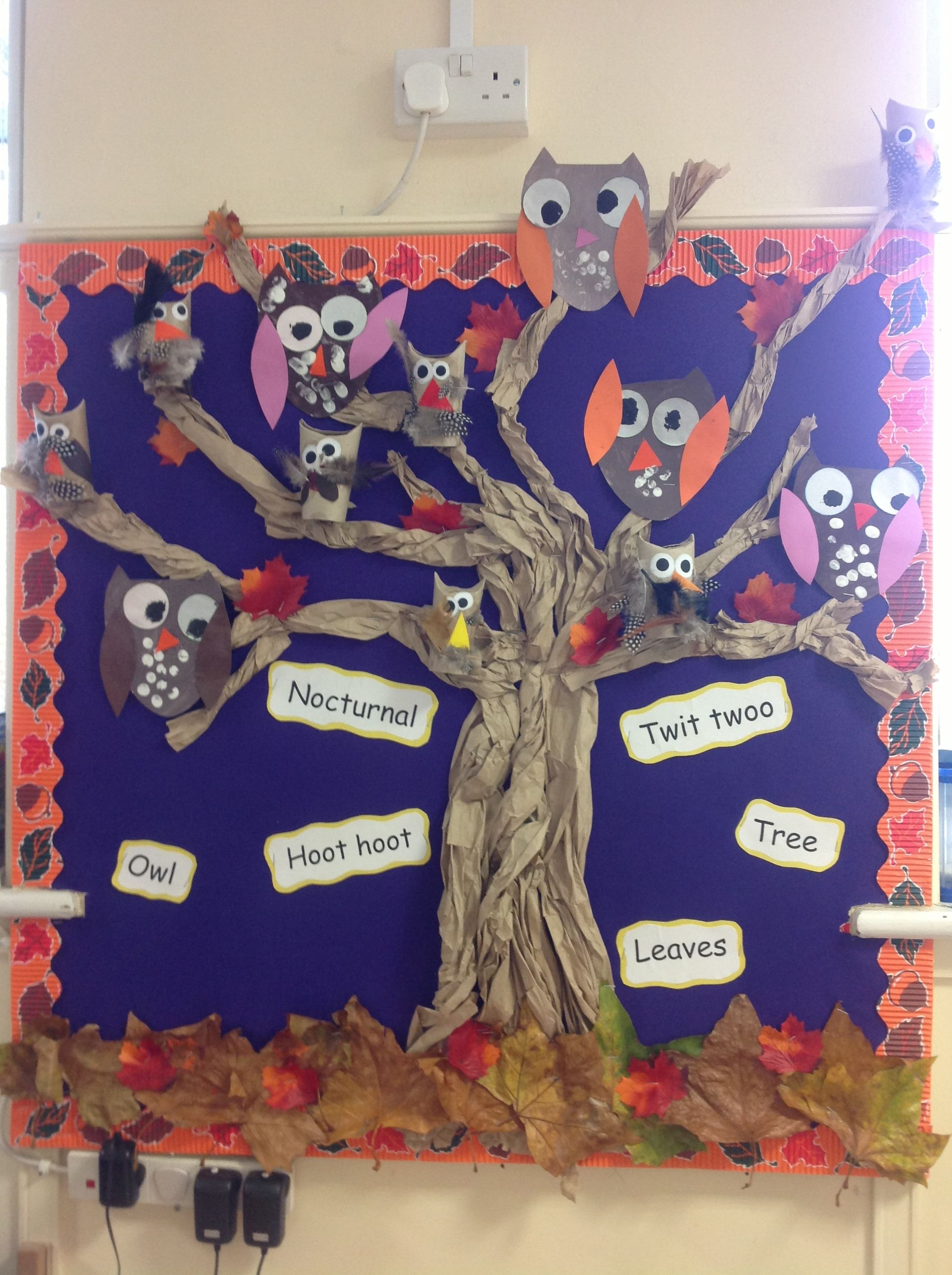 Owls Display Board