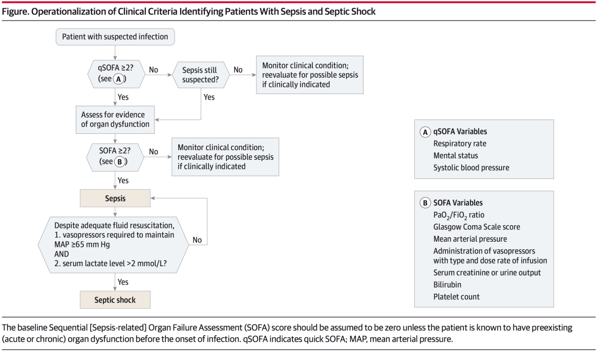 Qsofa Infection The Third International Consensus Definitions For Sepsis And