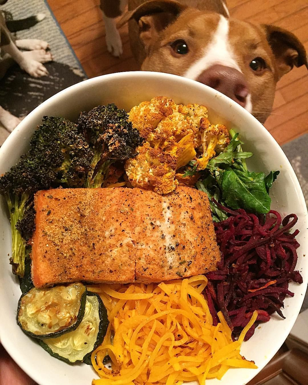 (@amber_fitfoodyogi) Another night, another #macrobowl and my favorite #photobomber 🐶🐾 The deets • Baked wild caught salmon + roasted broccoli (w/nutritional yeast), turmeric cauliflower and zucchini in #avocadooil+ lightly sautéed baby kale + spiraled beets and butternut squash ... fishfood amstaff