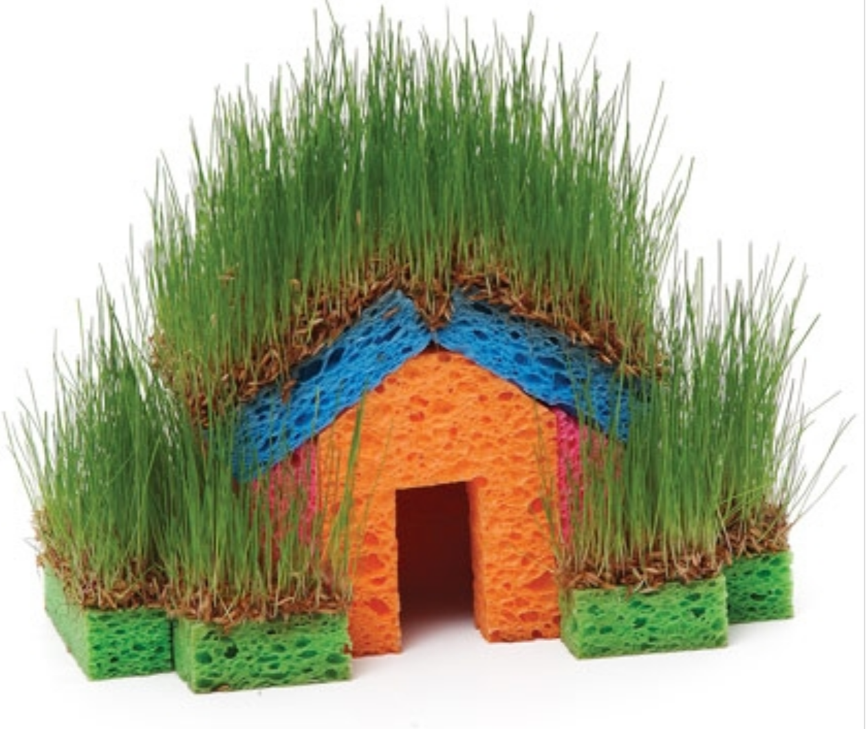 Grass Seed Sponge House How To Make One Easily Crafts