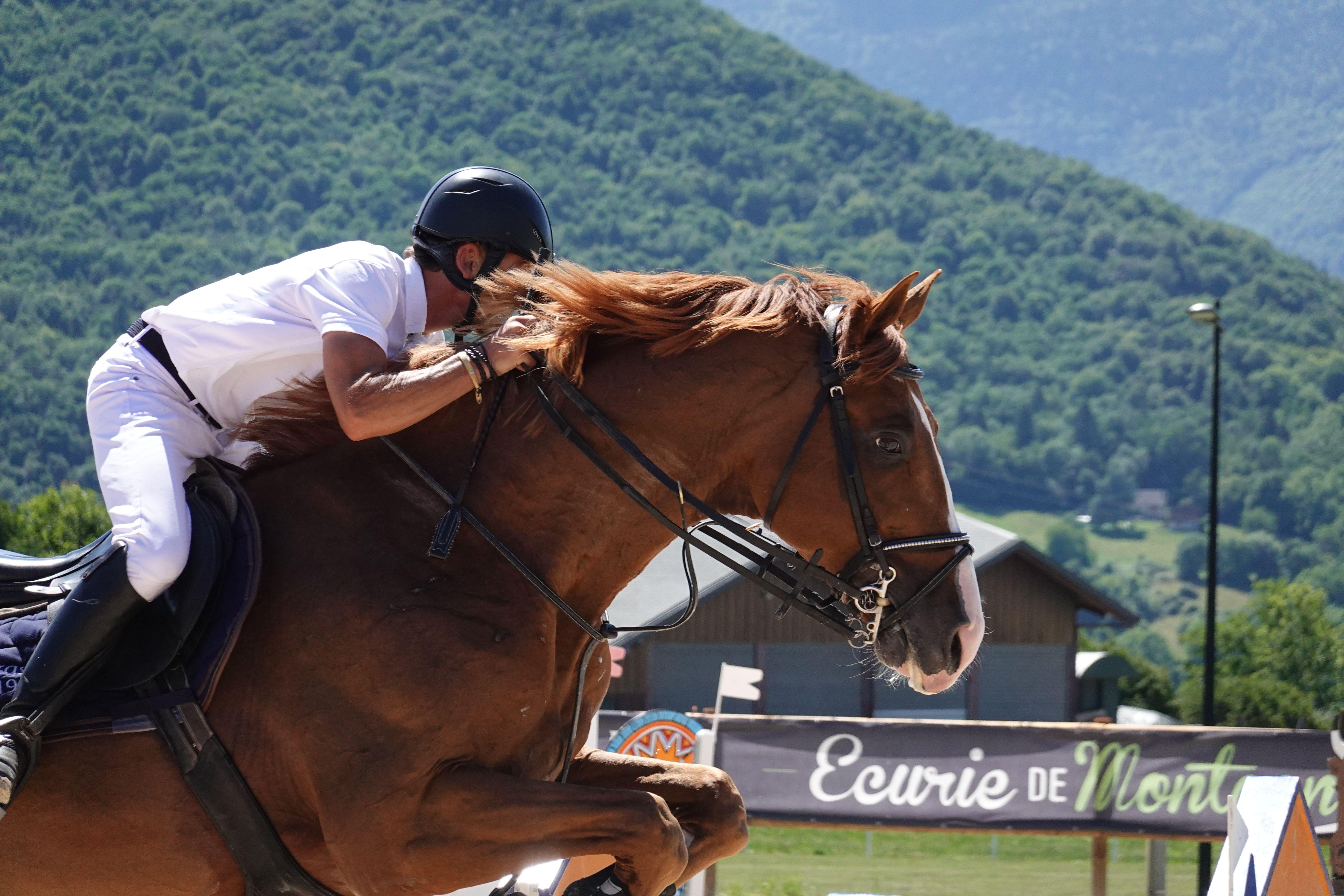 Toutes les Astuces pour les Concours d'Équitation