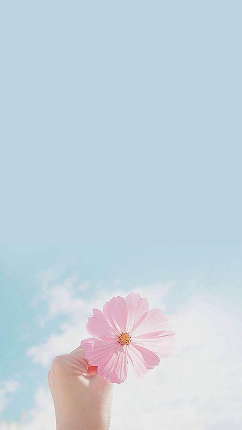 çiçek sevdası