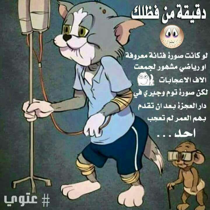توم وجيري بدار العجزة Most Popular Cartoons Cartoons Series Just For Laughs