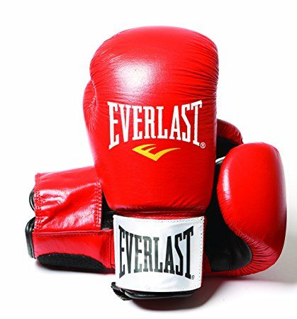 Everlast Fighter Leather Boxing Training Gloves