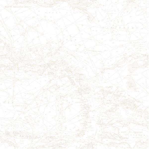 Canaveral Beige Charts Dlr16177 Brewster Wallpaper In 2020