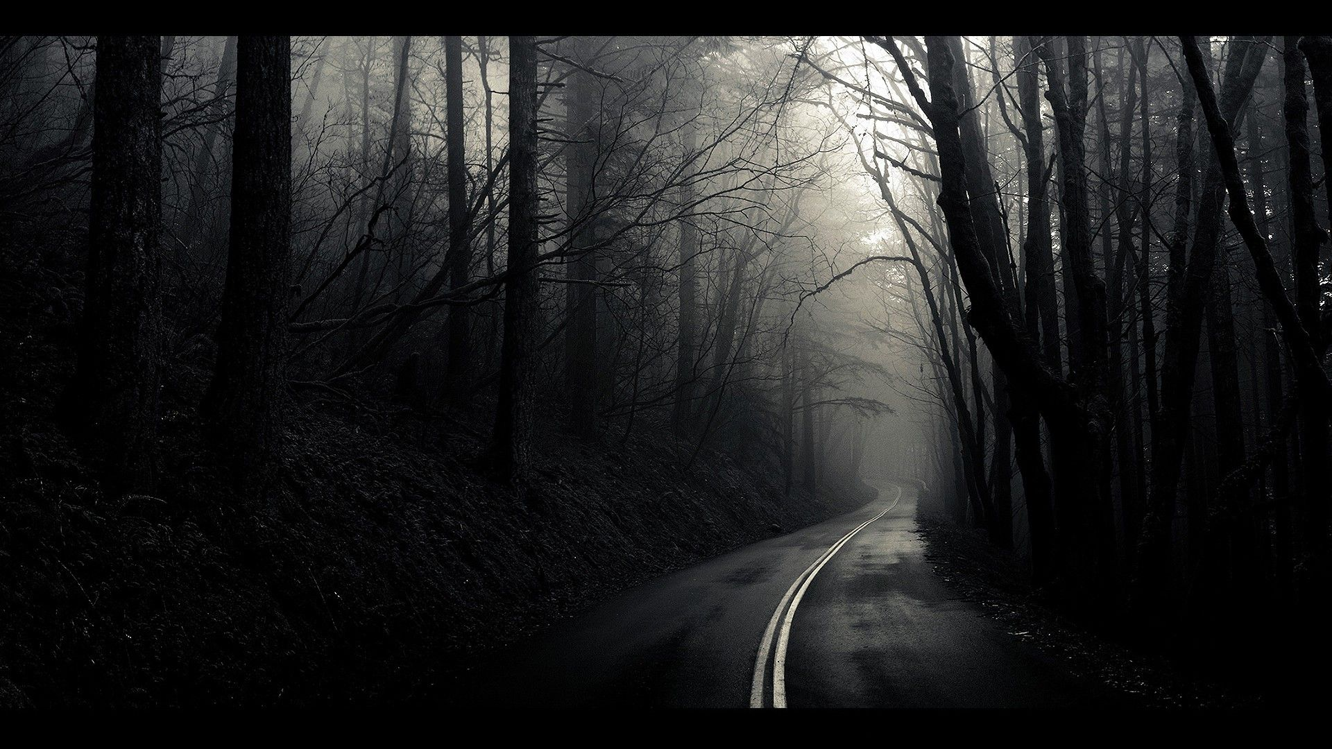 awesome dark path in hd amazingpict com wallpapers dark forest