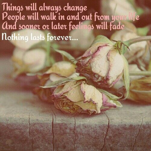 nothing lasts forever even the prettiest flower will wilt one day