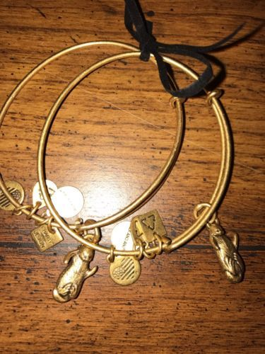 Alex and Ani Side by Side Otters Set of 2 Russian Gold Bangles w Cards and Box https://t.co/pCCbI2DMhv https://t.co/ak3I9nTodG