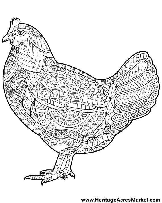 Chicken Theme Adult Complicated Coloring Page Pdf Digital Download