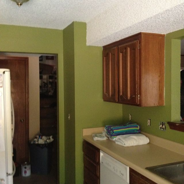 Behr Paint For Kitchen Cabinets: Kitchen Paint - Behr Grape Leaves