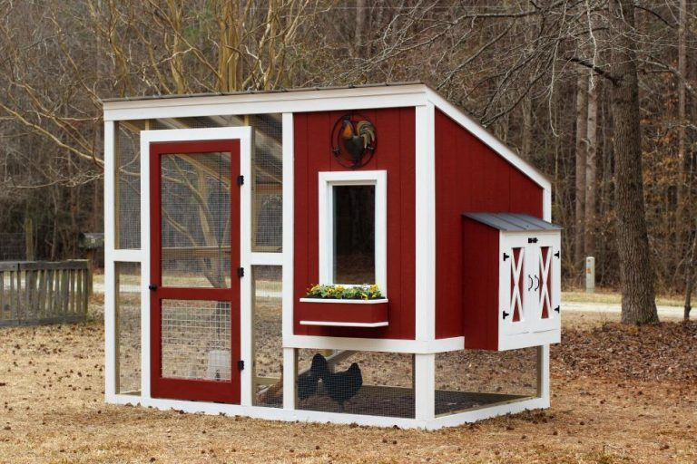 10 Free Backyard Chicken Coop Plans
