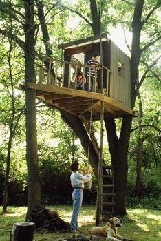Træ legehus