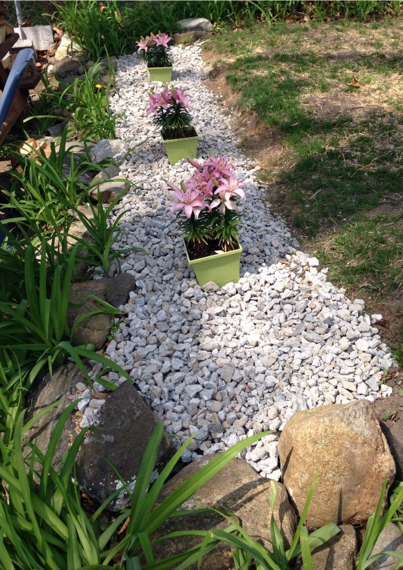 My creation to brighten up a blah spot! Rocks and Asian lilly.