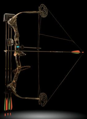 Reasons to Archery Hunt for Deer