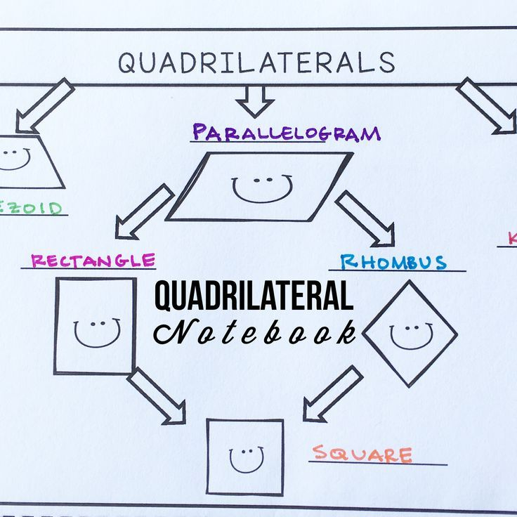 Geometry Quadrilateral Interactive Notebook Interactive
