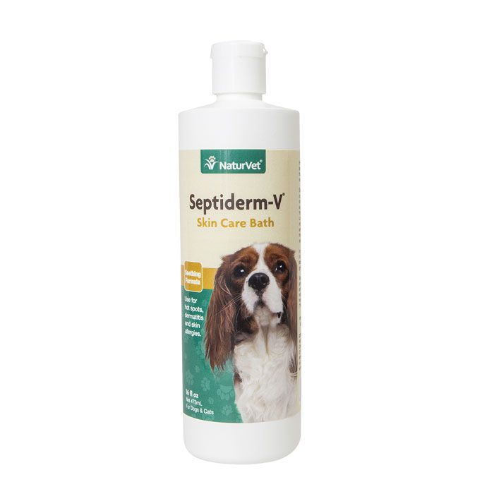 Naturvet Septiderm V Bath 16 Oz Dog Shampoo Skin Care Cat Skin