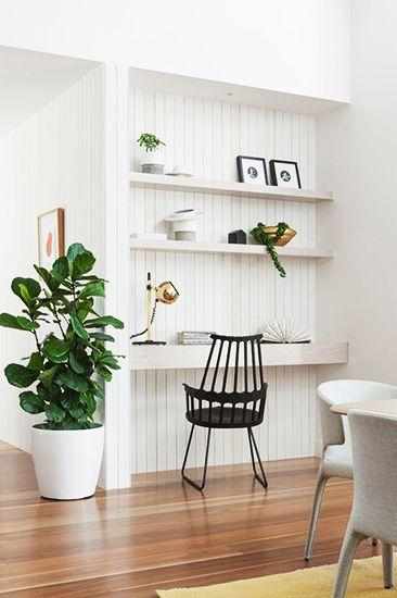 The Best Low Light Plants For Your Desk Low Light Plants