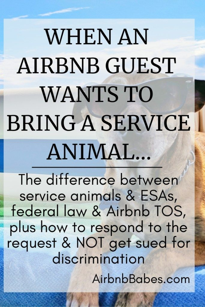 How an Airbnb host should respond when a guest asks to