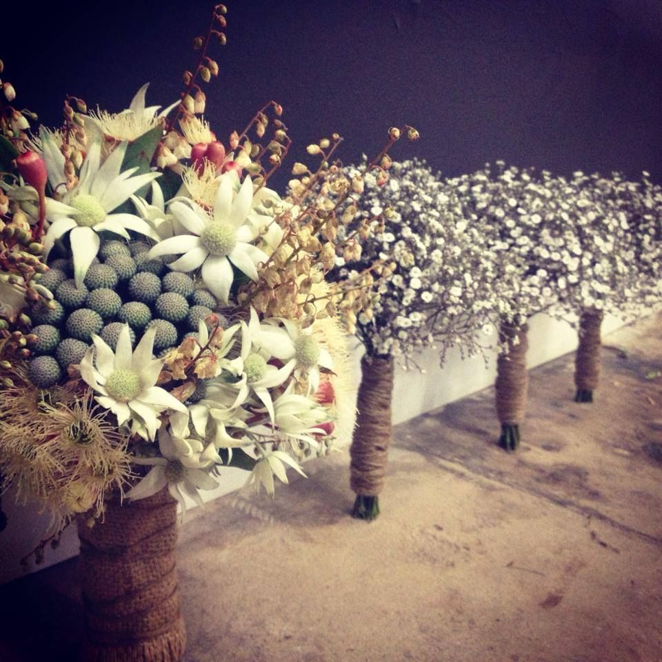 Bridal and bridesmaids bouquets. Flannel flowers and baby's breath (gyp). Thanks to Katie at Pollen and Patina