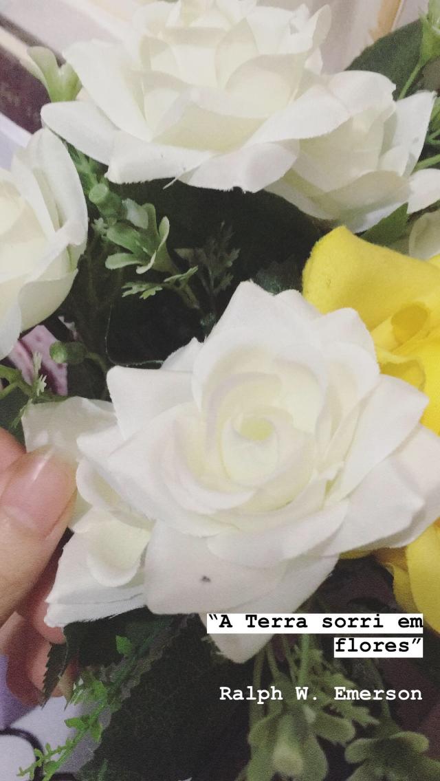 A Terra Sorri Em Flores Frase Curta De Ralph Waldo Emerson